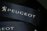 Peugeot Lint 25 mm